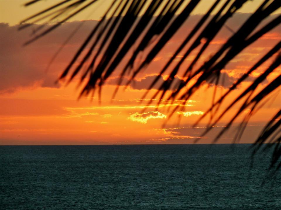 sunset, dusk, tropical, vacation, ocean, sea, horizon