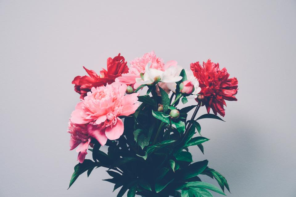 bouquet, flowers, red, pink, nature