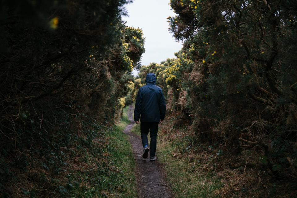 guy, man, male, people, back, walk, leave, road, path, trees, grass