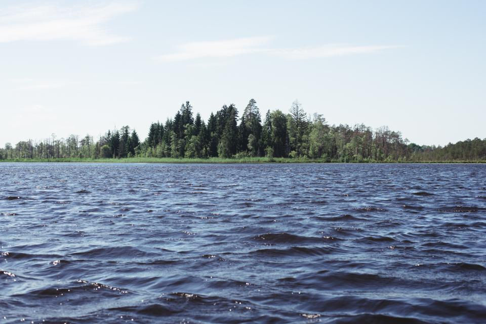 lake, water, trees, forest, woods, outdoors, sky, sunshine, nature