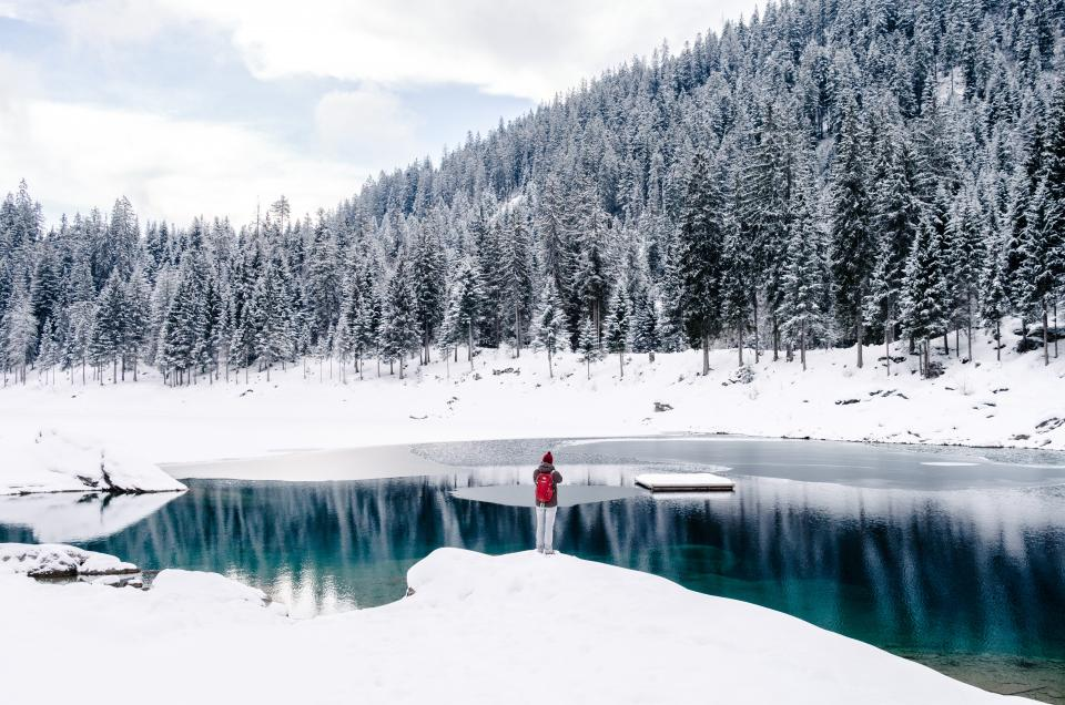 winter, snow, pine tree, Christmas, December, cold, weather, white, flakes, man, alone, people, water, ice