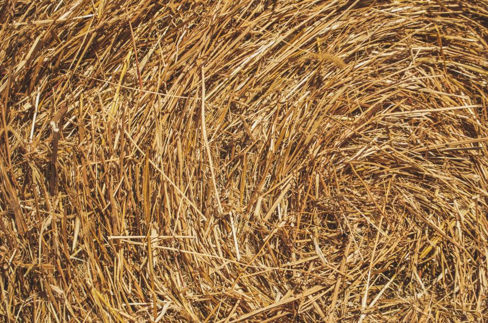 hay, farm, countryside, texture