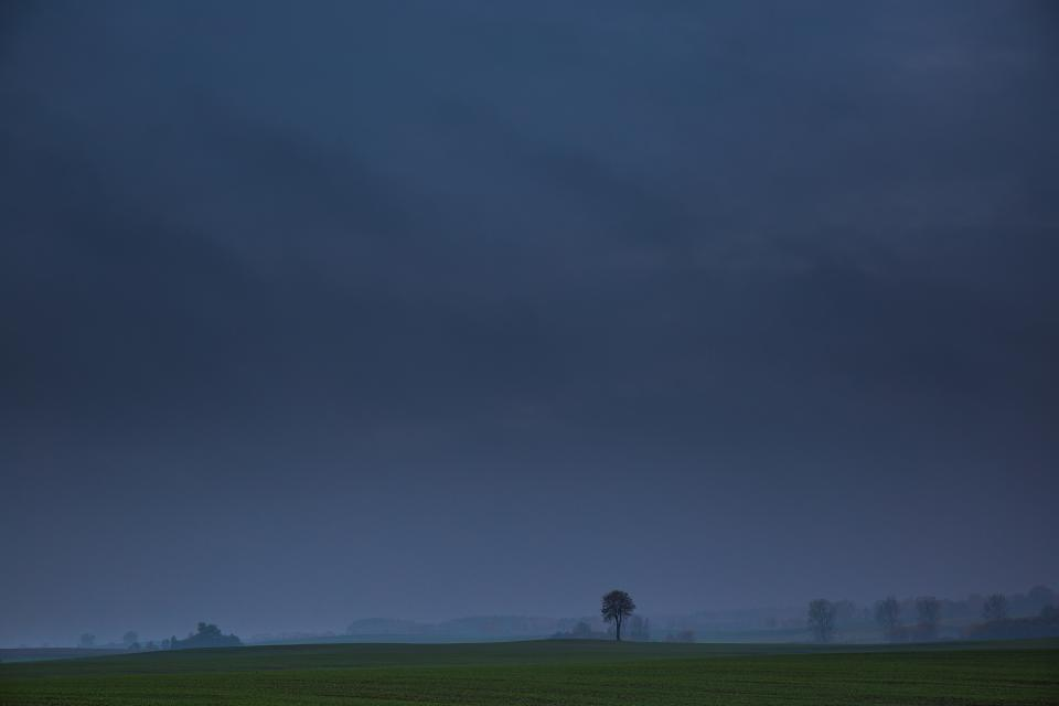 dark, night, evening, storm, clouds, cloudy, field, grass, trees, nature, landscape