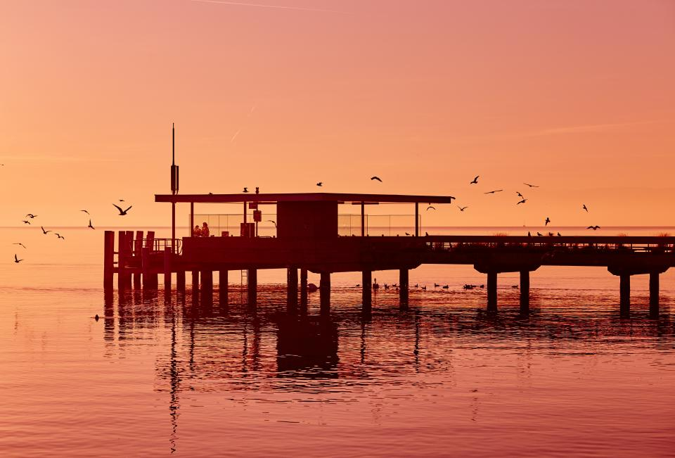 pier, dock, beach, ocean, sea, birds, sunset, dusk, silhouette, shadow, sky, horizon, landscape