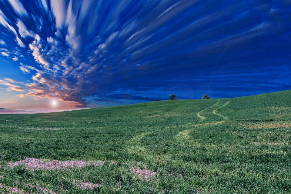 green, grass, field, rural, countryside, blue, sky, clouds, landscape, nature, outdoors