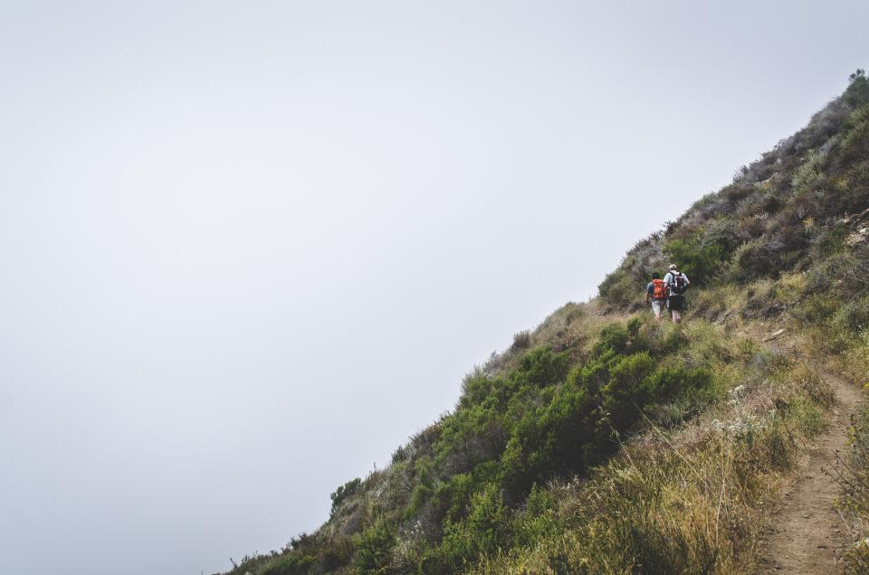 hiking, trekking, fitness, outdoors, people, backpacks, trail, hill, foggy, nature, mountain, hill, sky