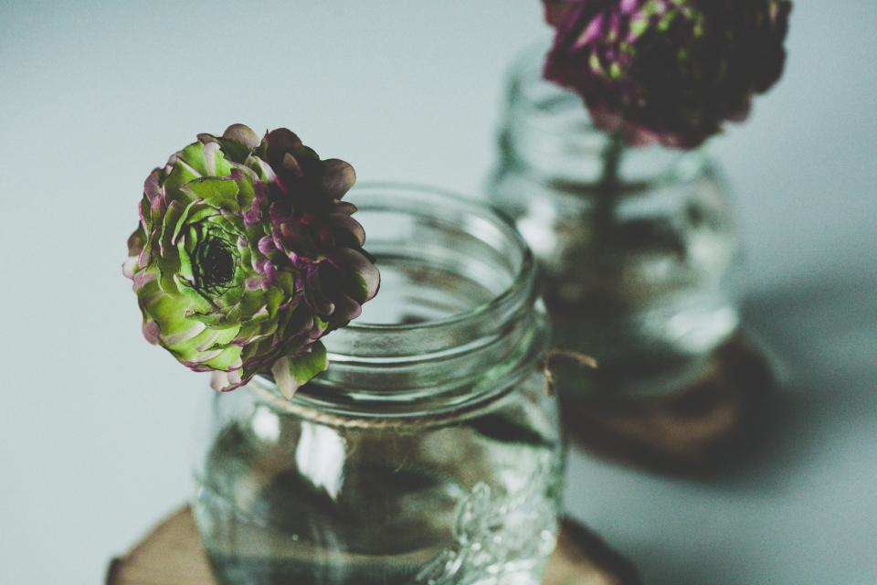 vase, mason jar, flowers, decor