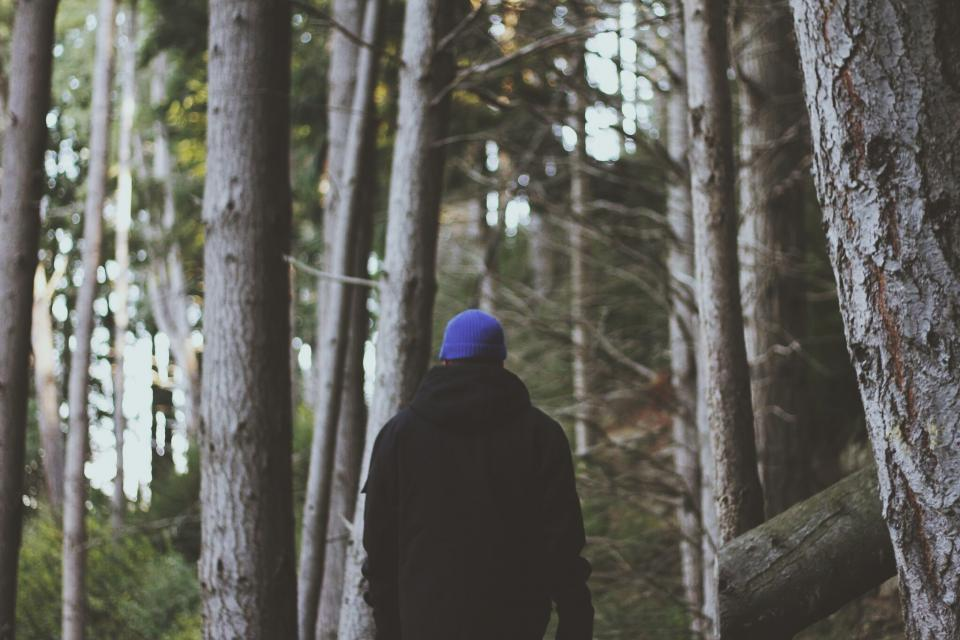forest, woods, hiking, trekking, outdoors, adventure, guy, man, people, jacket, toque, hat, beanie, trees, nature
