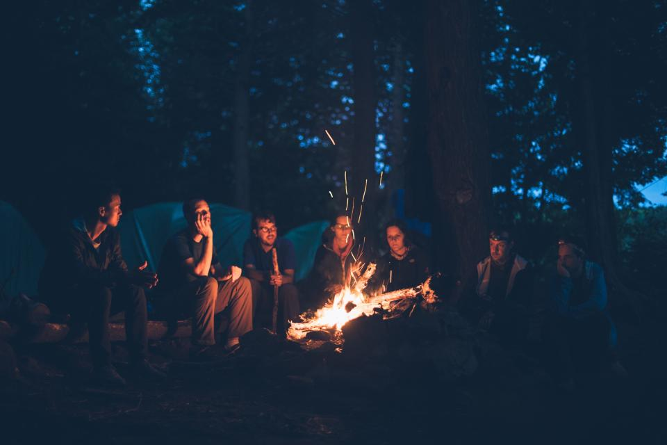 people, men, girls, campfire, burning, flame, camping, outdoor, adventure, trees, forest, dark, night, cold