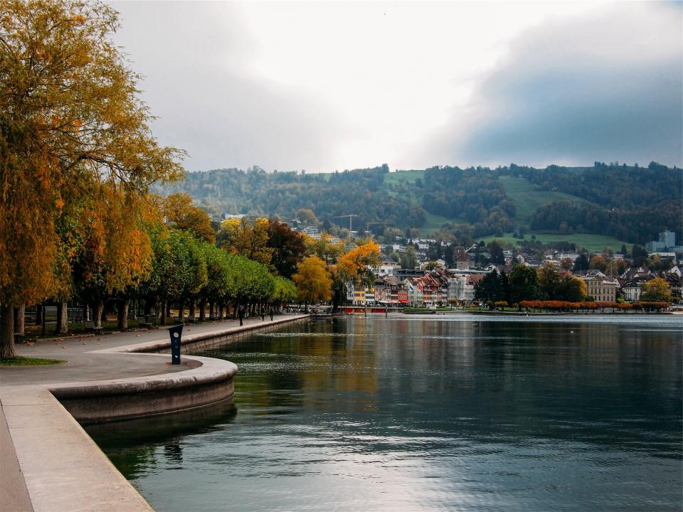 river, water, park, trees, town, city, houses