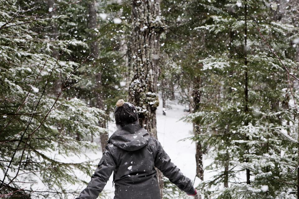 snow, snowing, cold, winter, outdoors, forest, woods, trees, nature, girl, woman, people, jacket, coat, hat