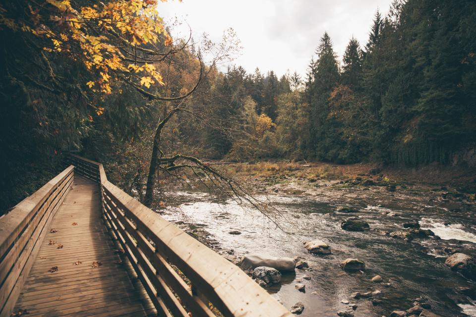 river, stream, water, rocks, trees, forest, outdoors, nature, wood, bridge, fall, autumn