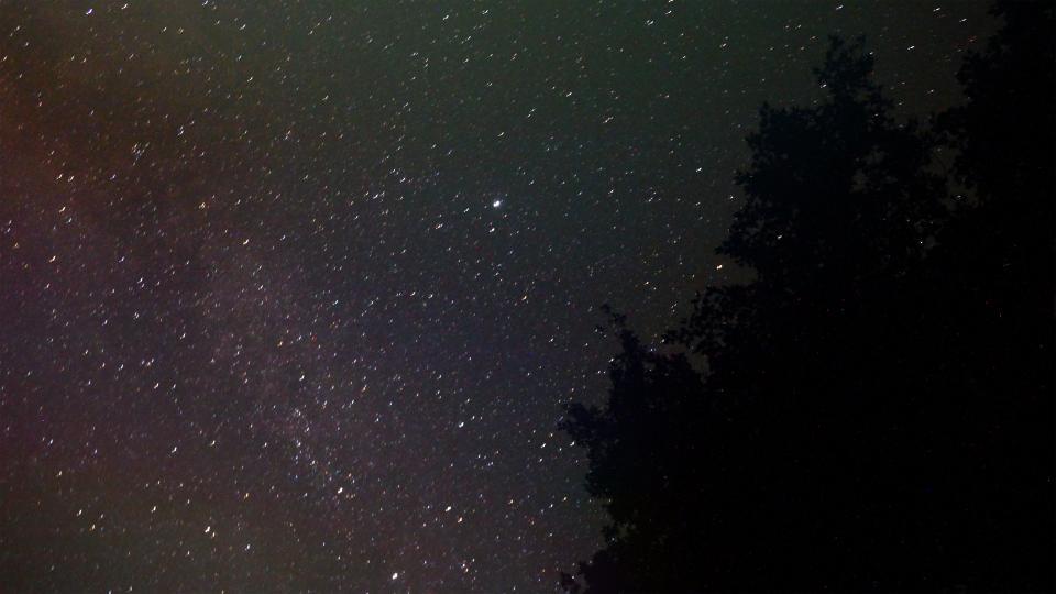 stars, galaxy, sky, night, dark, evening, trees, silhouette, space, nature