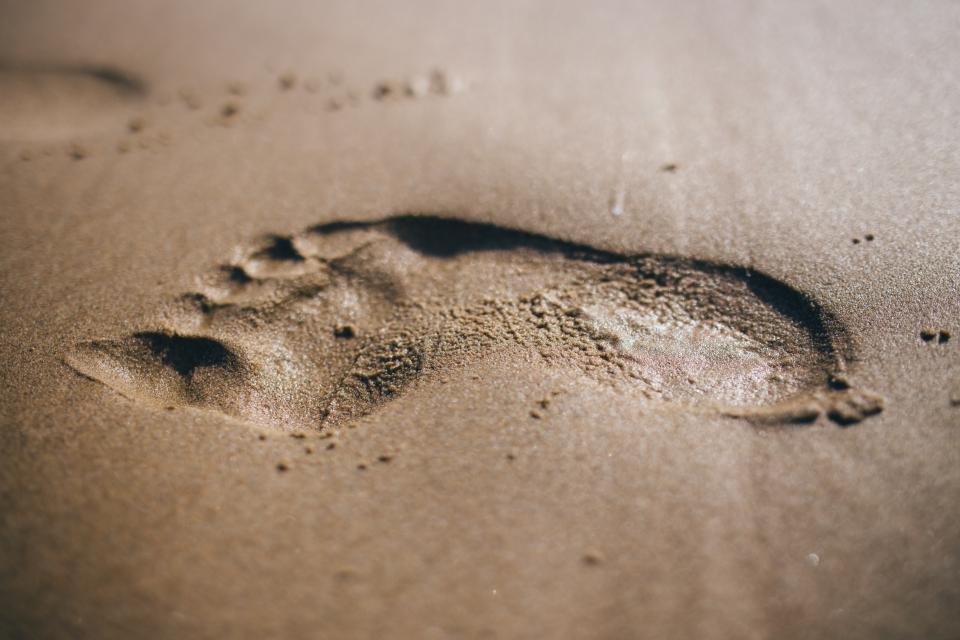 footprint, beach, sand, summer, shore