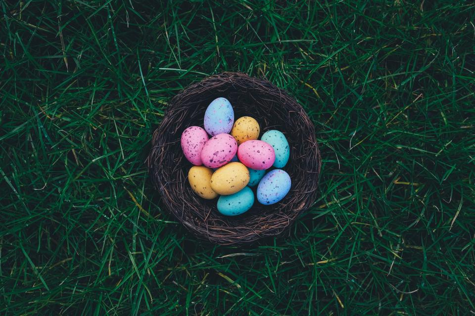 easter, eggs, basket, grass, outdoors, nature