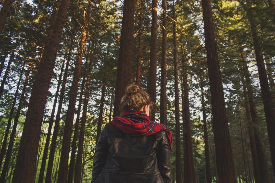 girl, leather, jacket, scarf, woods, forest, trees, nature, people, brunette