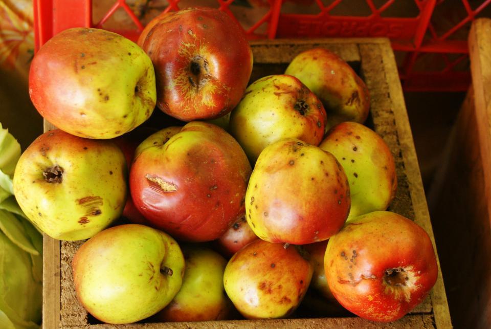 apples, fruits, food, healthy