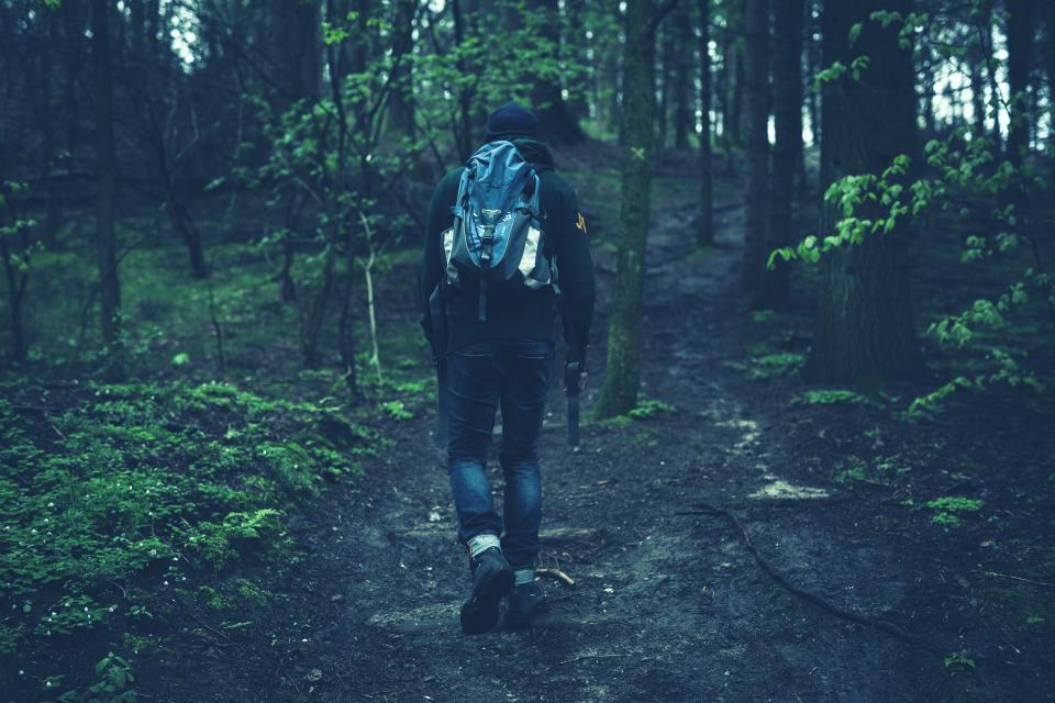 people, walking, fitness, hiking, trekking, forest, woods, nature, trees, backpack
