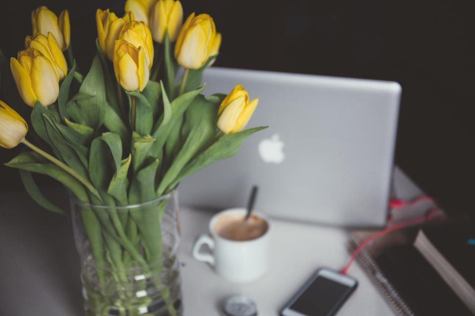 tulips, flowers, vase, macbook, laptop, computer, coffee, office, desk