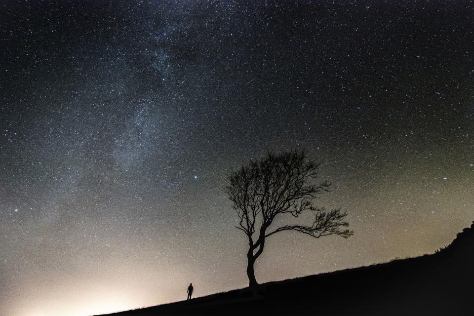 stars, galaxy, space, astronomy, night, dark, evening, sky, silhouette, shadow, trees