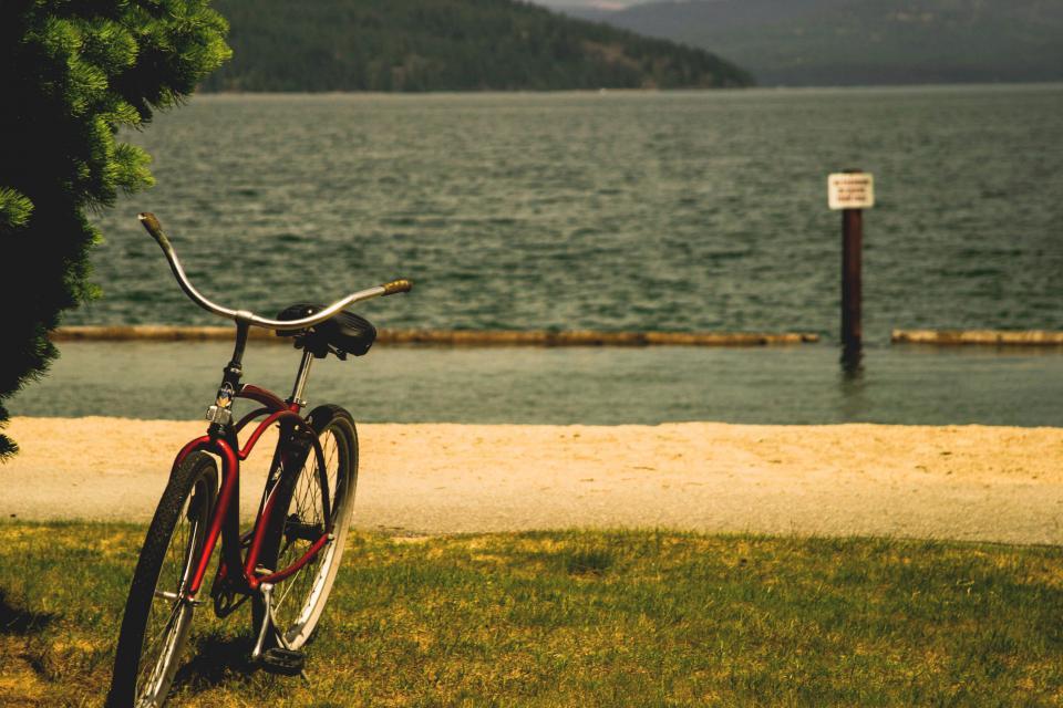 bike, bicycle, lake, water, grass, nature, outdoors