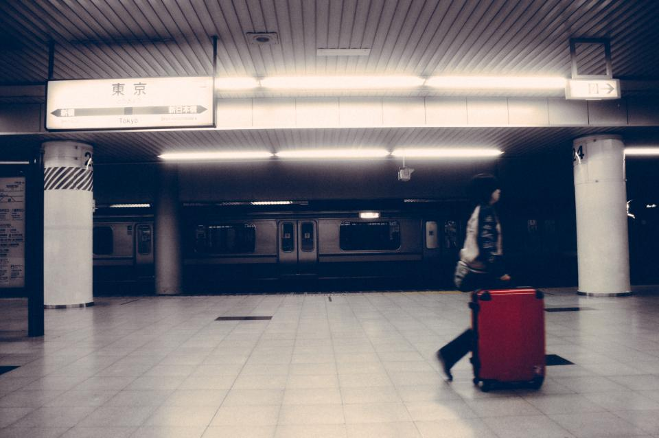 subway, station, transportation, Tokyo, travel, luggage, people