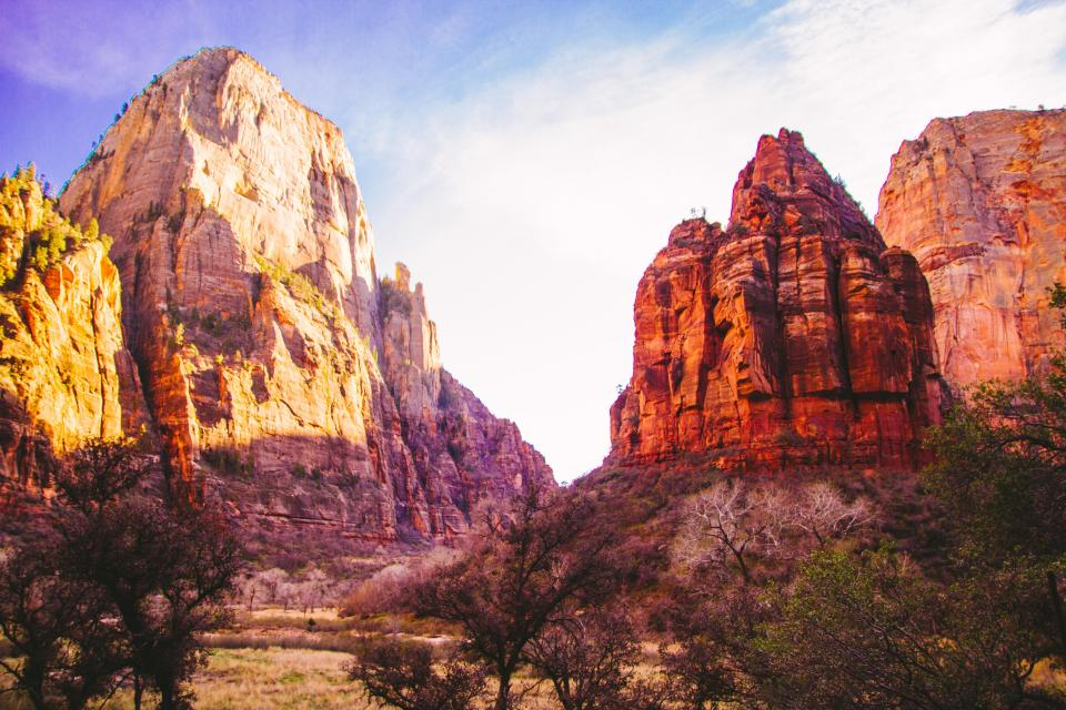 desert, canyons, trees, nature, outdoors, sunny, sky, landscape