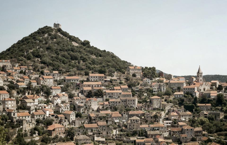 mountain, trees, plants, sky, house, village