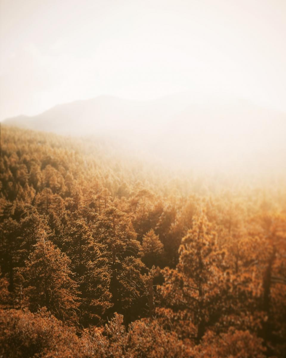 nature, landscape, mountains, summit, peaks, sky, fog, forests, trees, gradient, orange, brown