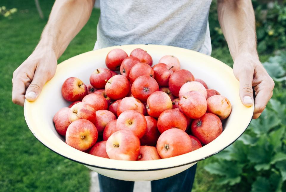 bowl, apples, fruits, healthy, food, guy