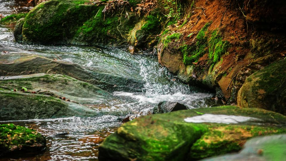 river, stream, rocks, moss, grass, brook, bubbling