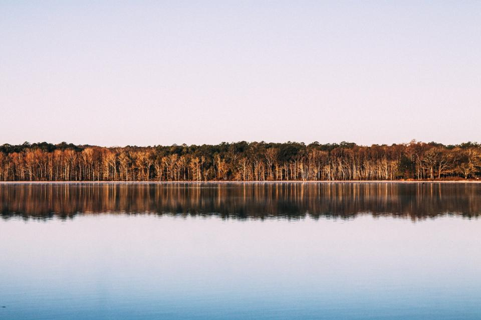 lake, water, reflection, trees, forest, woods, outdoors, nature, sky, summer, sunshine