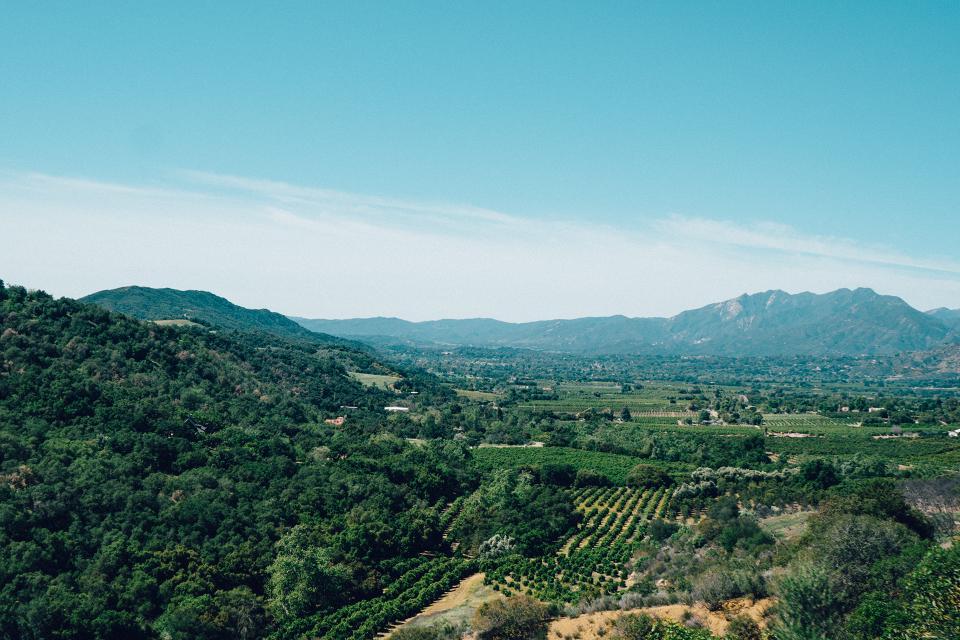 Ojai, California, vineyards, landscape, green, grass, fields, mountains, blue, sky, sunny, sunshine