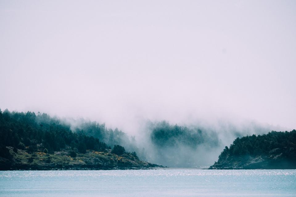 lake, water, trees, landscape, nature, fog, clouds, grey, outdoors