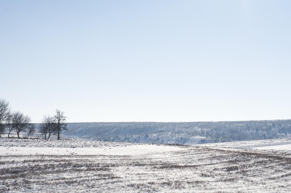 winter, snow, cold, field, blue, sky, countryside, rural, nature, landscape, outdoors