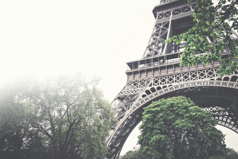 eiffel tower, architecture, trees, leaves, nature, sky, fog, foggy