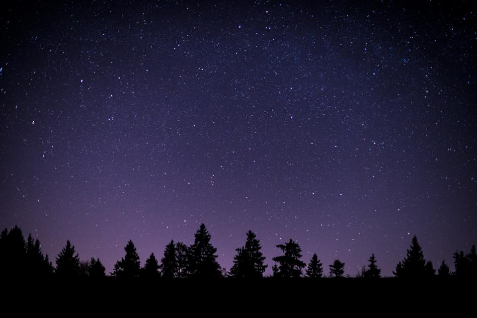 stars, galaxy, space, universe, night, dark, sky, silhouette, purple, trees, forest, shadow, nature
