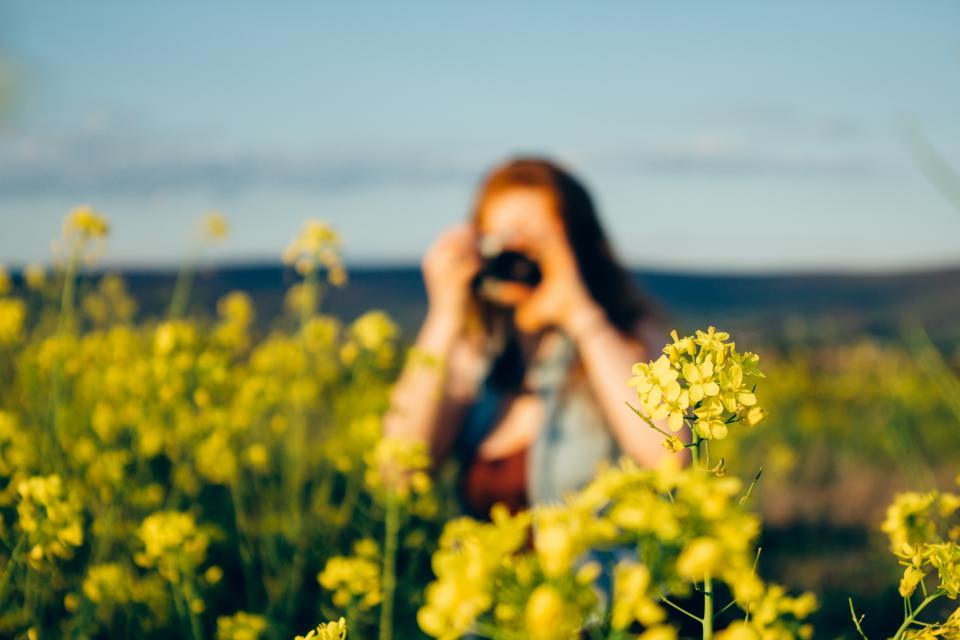 yellow, flowers, garden, nature, girl, woman, photographer, photography, blurry, summer