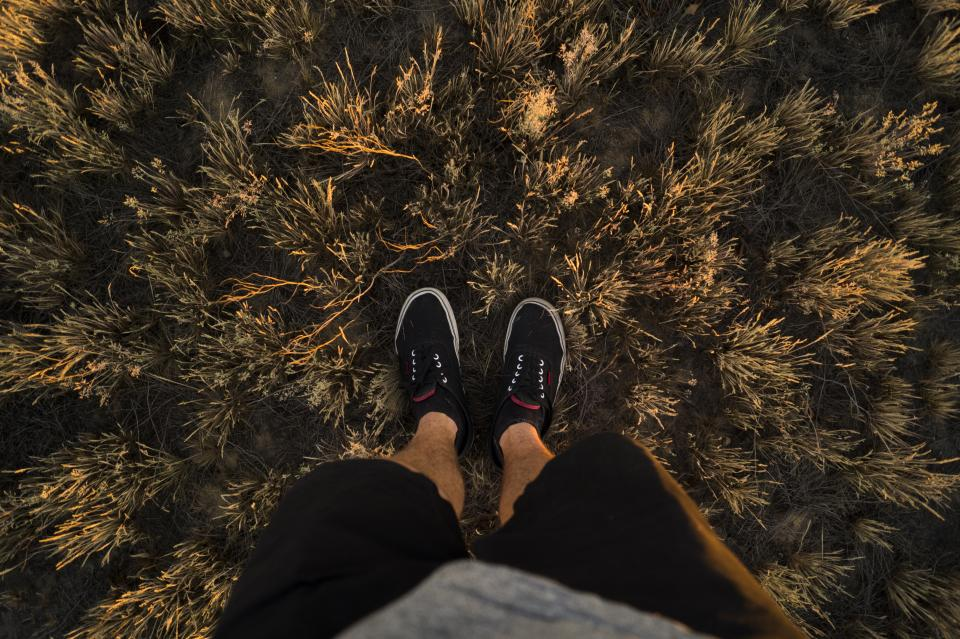 guy, man, male, people, feet, legs, shoes, sneakers, shorts, grass, nature, travel, green