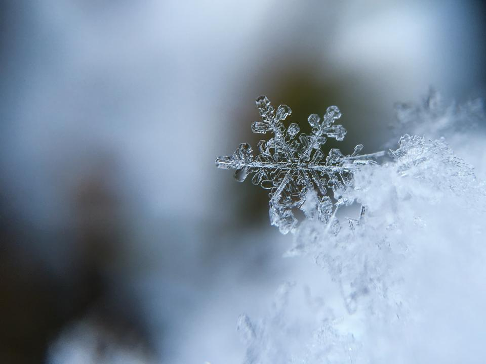snowflake, ice, frozen, cold, winter