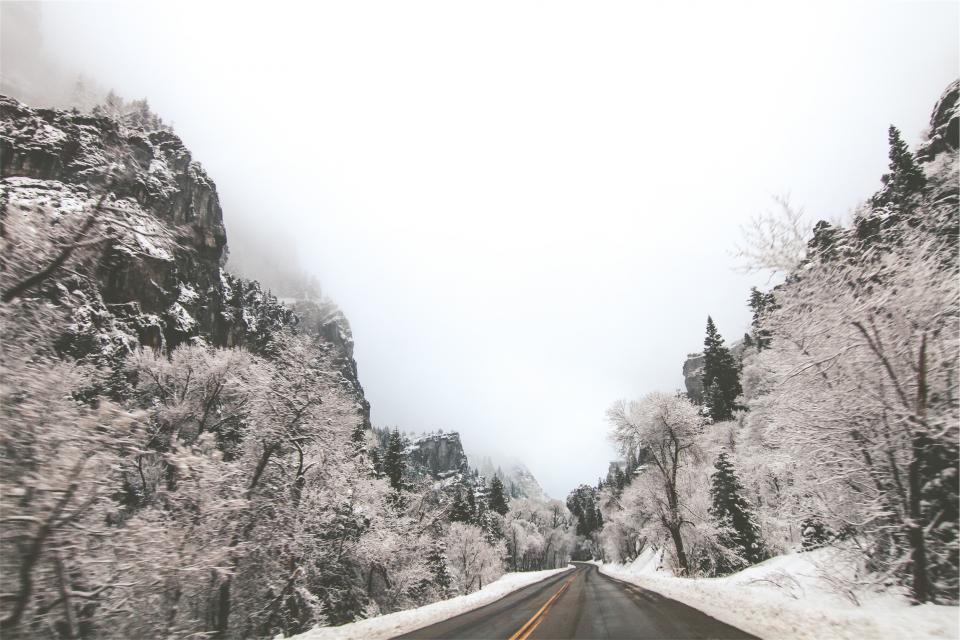 road, winter, ice, frozen, freezing, trees, pavement, snow, fog, rural, cliffs