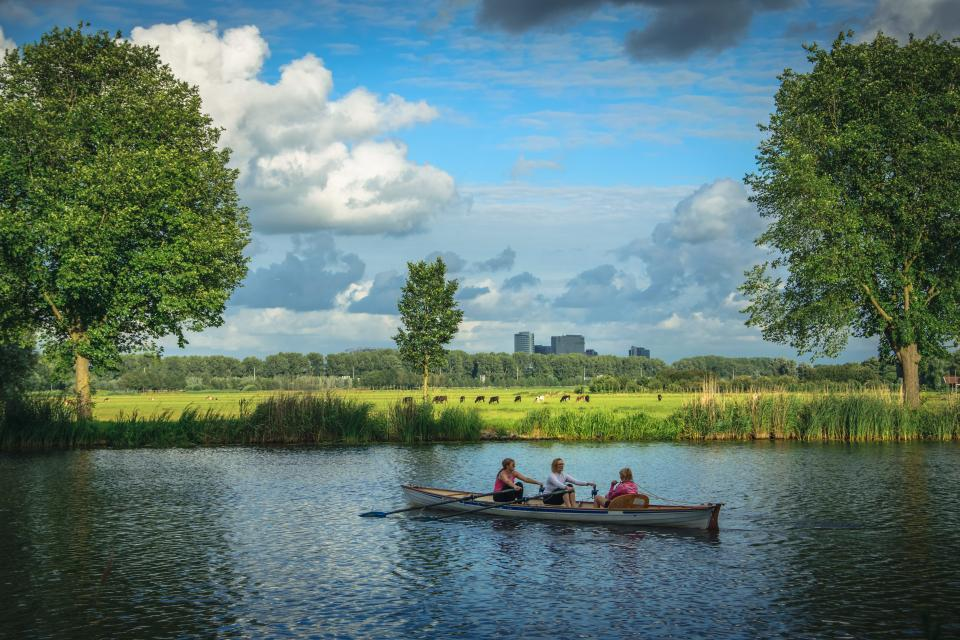 nature, water, lake, reflection, park, plants, bushes, trees, people, group, friends, rowing, sky, clouds