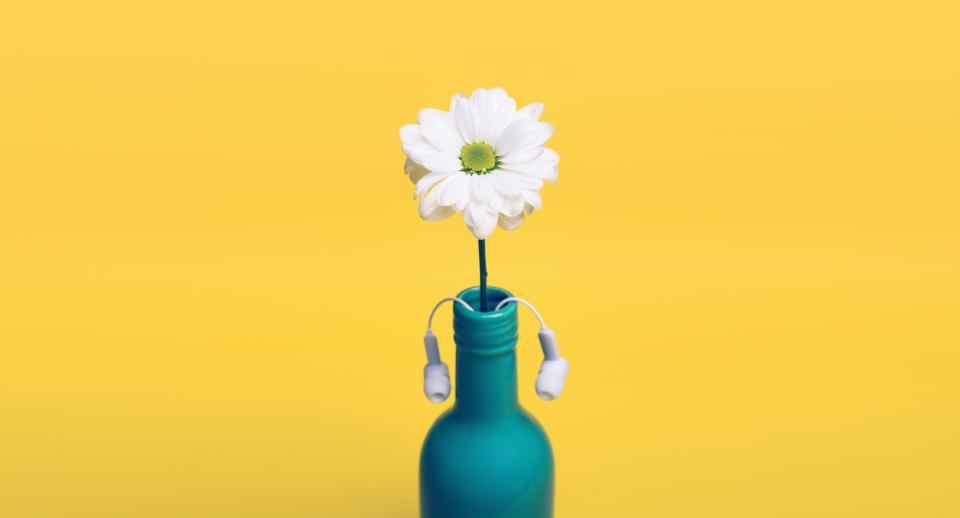 yellow, daisy, bottle, vase, headphones, earbuds, objects, decor