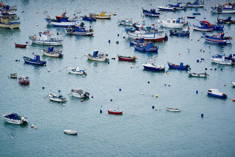 boats, marina, harbor, harbour, water, ocean, sea, lake