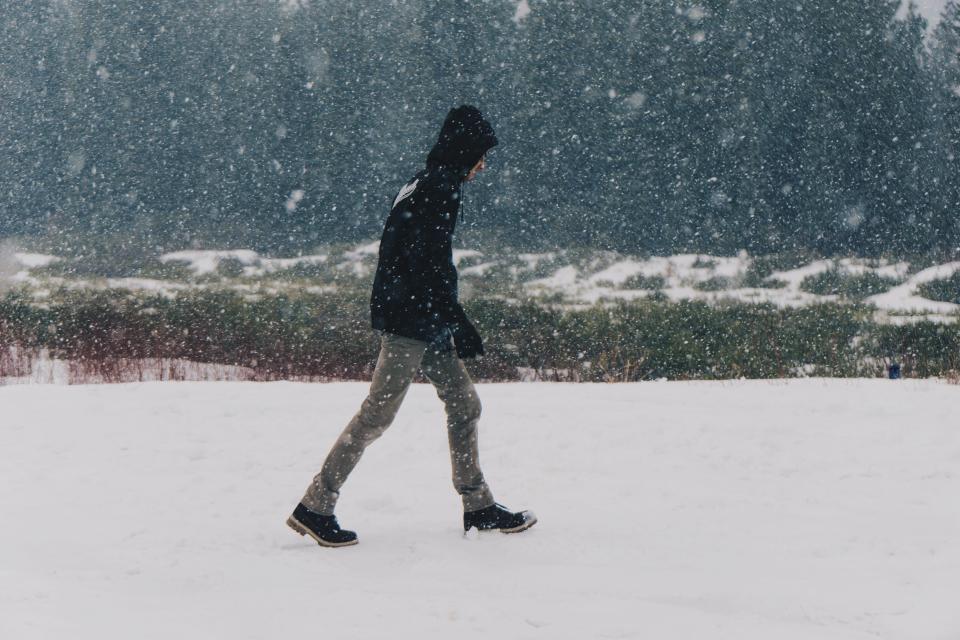 snow, blizzard, winter, cold, walking, guy, man, people, nature, hood, jacket, coat