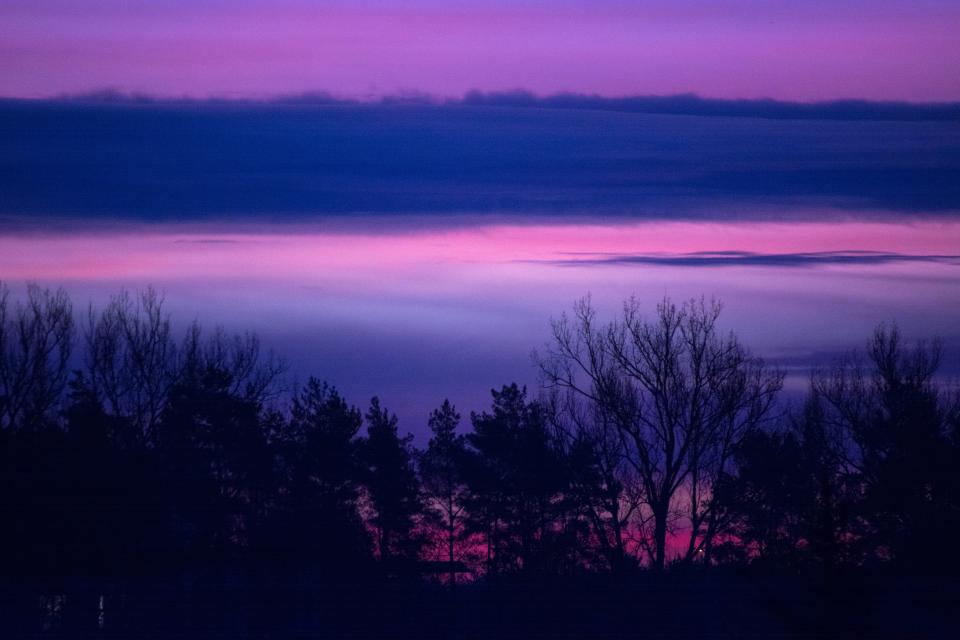 sunrise, dawn, morning, landscape, nature, trees, sky, clouds, purple