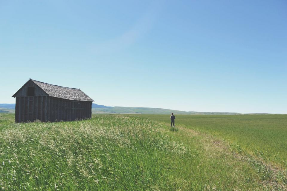 landscape, field, green, grass, nature, barn, rural, countryside, blue, sky, outdoors, people, guy, man, adventure
