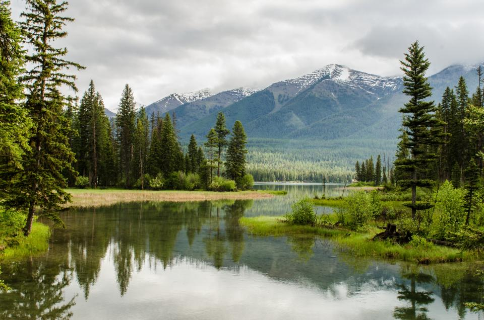 nature, landscape, mountains, summit, peaks, snow, forests, trees, grass, water, stream, river, surface, reflection, picturesque