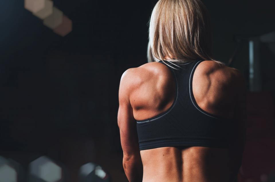 girl, woman, fitness, workout, gym, muscles, people, back