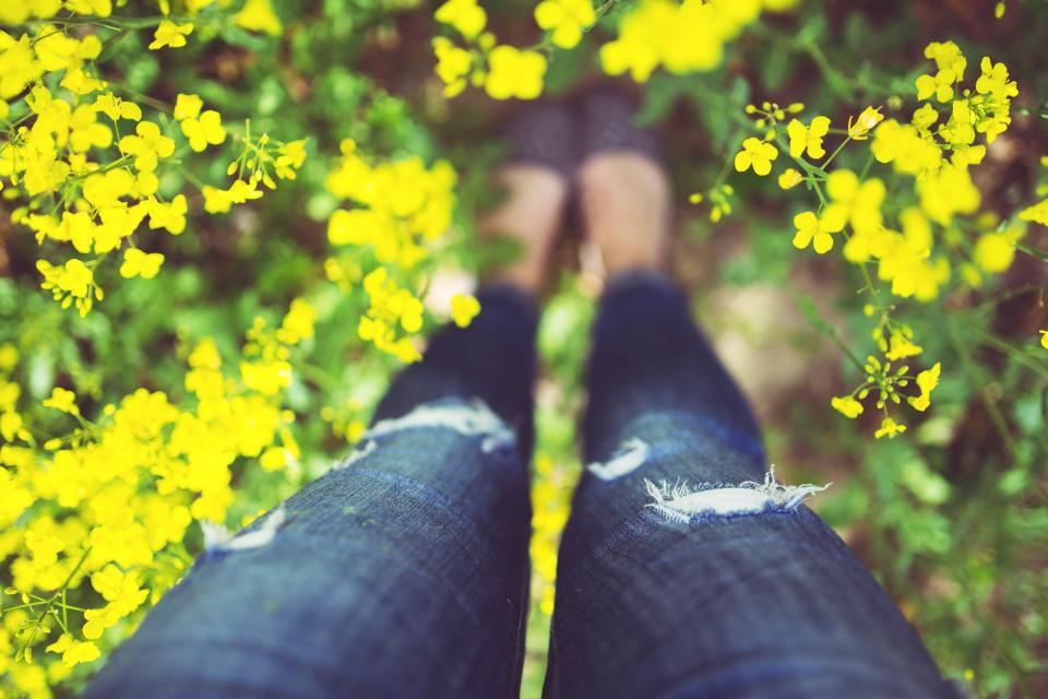 legs, nature, flowers, girl, woman, jeans, denim, garden